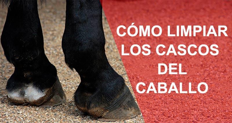 Cómo debes de limpiar los cascos de los caballos